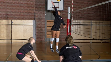 Volley skud